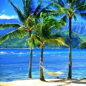 Review Alert - Hawaii